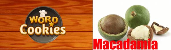 Word Cookies Macadamia Answers