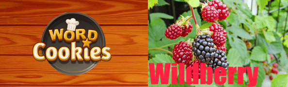 Word Cookies Wildberry Answers