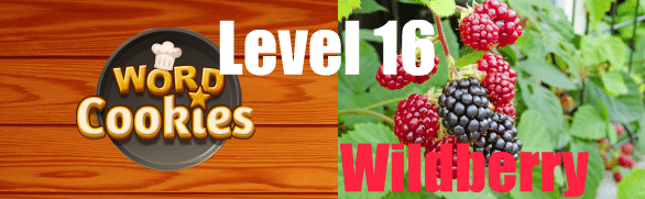 Word Cookies Wildberry 16