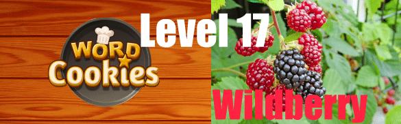 Word Cookies Wildberry 17